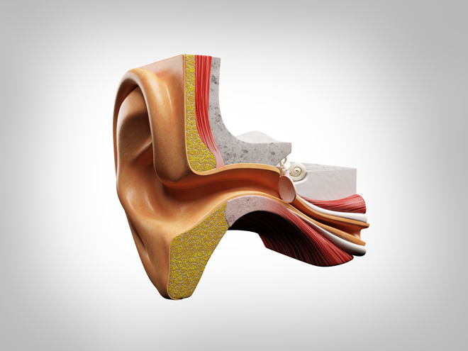 Development of Diagnostic Device Designed For Eustachian Tube Dysfunction Treatment