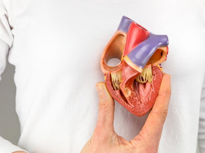Yeni Jenerasyon Kalp Kapağı